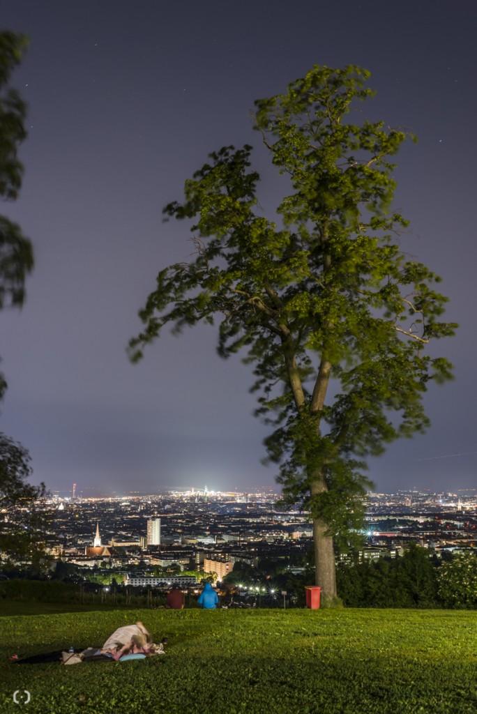 vienna skyline 2014_georgeye-2